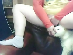 real love my dog webcam