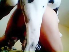 Nice japan´s dog orgy