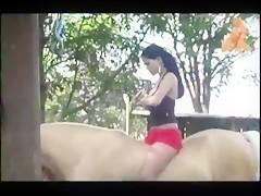Horse sex whores 37