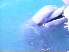 Sexo con delfin