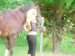 Dildo and horse sex